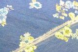 Tissu Chambray imprimé Fleuri Bleu -Coupon de 3m